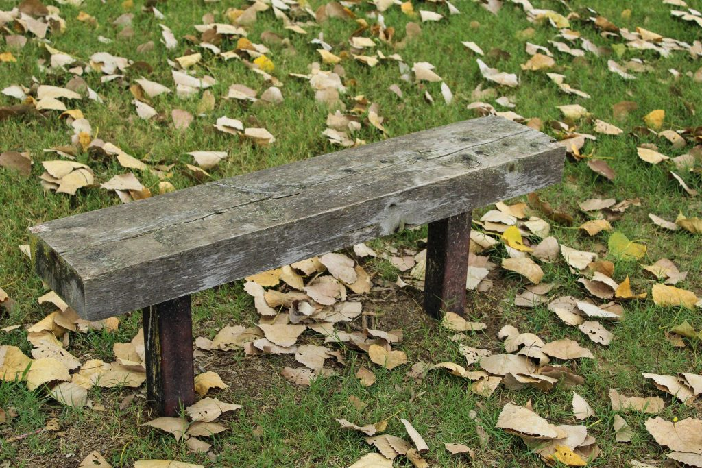 Wooden bench surround by dead leaves.