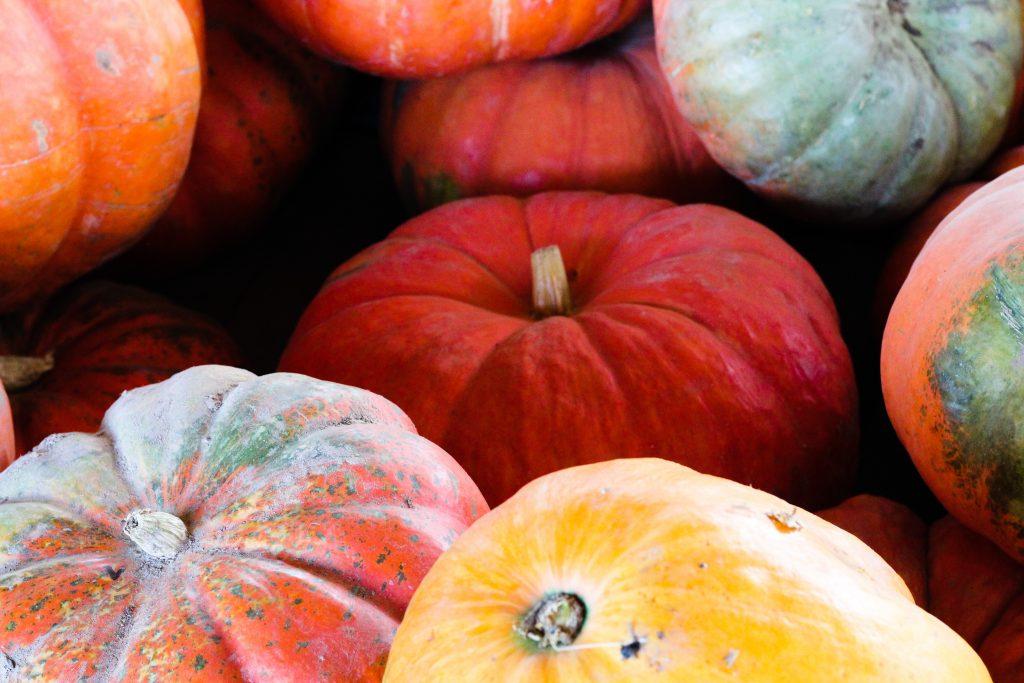 Bright mixed pumpkins