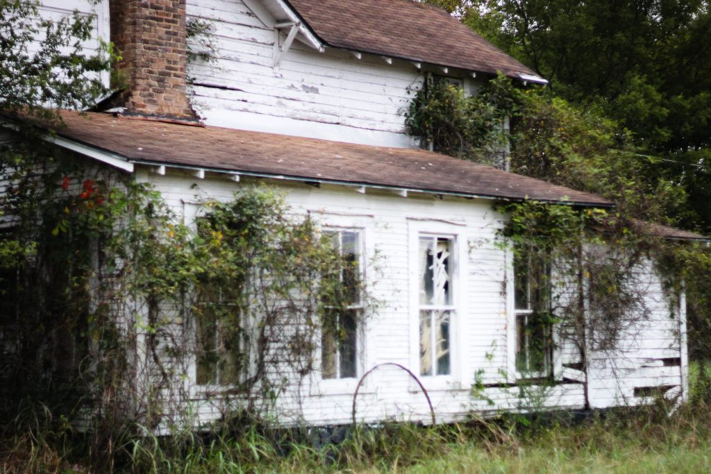 Old white house with vines