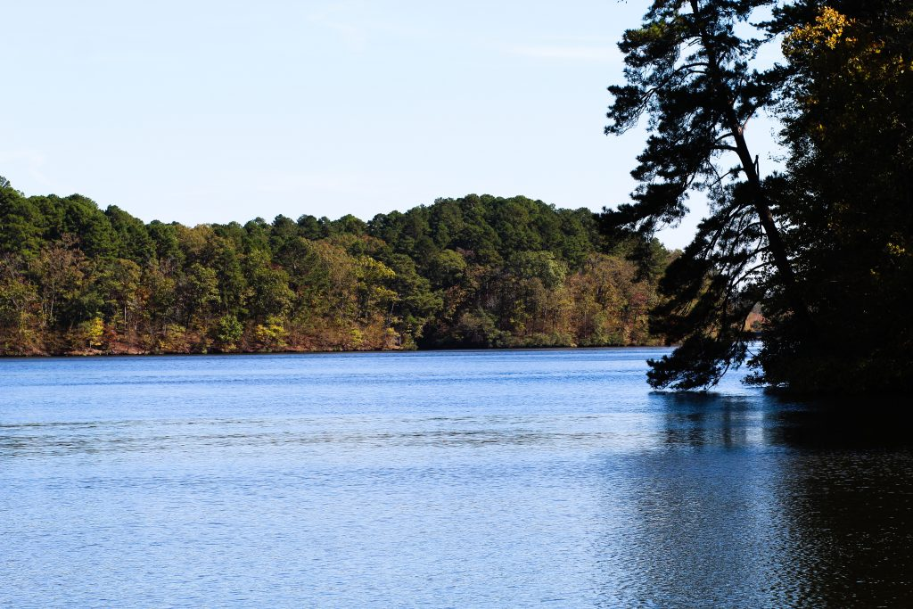Lake Catherine in the Fall